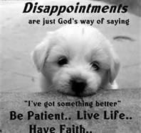 dog wisdoms